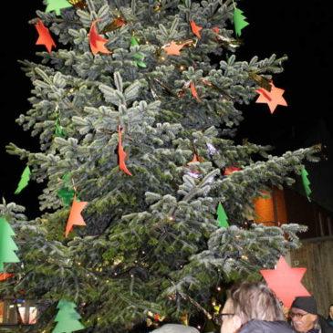 2015 Aufstellen des Weihnachtsbaumes